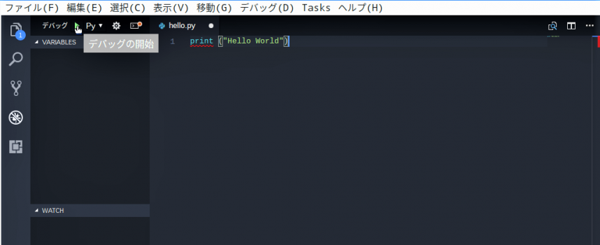Raspberry PiでのプログラミングもエディターはVisual Studio Code!【 デバッグ・実行編 】