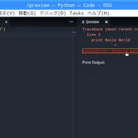 Raspberry PiでのプログラミングもエディターはVisual Studio Code!【 設定編 その2 】