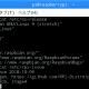 【STEP-35】OS ( Raspbian ) の配布バージョンを表示する